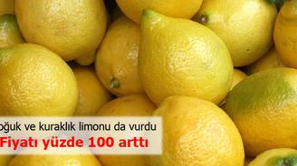 Limon fiyatları yüzde 100 arttı