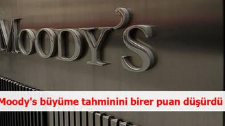 Moody's büyüme tahminini birer puan düşürdü