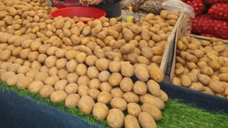 'Patatesin fiyatı yarı yarıya düşecek'