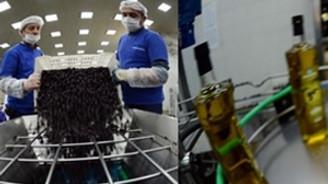 Marmarabirlik 'organik zeytin' pazarına göz dikti