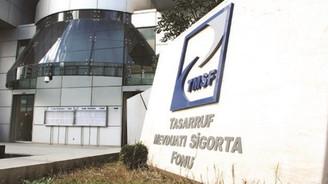 TMSF, Hazine'ye 12 milyar dolar ödedi