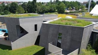 'Bitkilendirilmiş Çatılar, şehirlerdeki sel riskinizi azaltır'