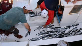 Balıkçılıkta hedef uluslararası sular