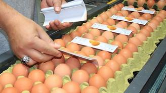 Rusya'ya yumurta ihracatı bu ay başlıyor