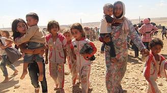 1.5 milyon Suriyeli sığınmacıya 4.5 milyar dolar harcandı