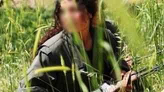 Yüksekova'da bir terörist teslim oldu