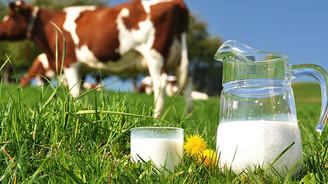 İnek sütü miktarı martta arttı