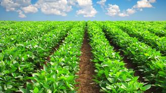 Kullandırılan tarım kredi miktarında artış hedefleniyor