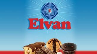 Balaban'ın Elvan'a satışı onaylandı