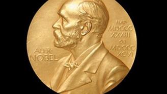 Nobel ödülü 4.8 milyon dolara satıldı