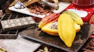 Gıda ihracatçılarına Foodex Japan 2015 çağrısı