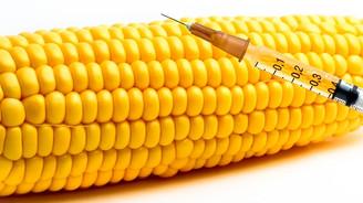 GDO'lu 37 gen için 'basit işlem'