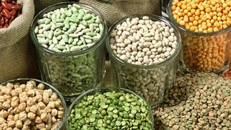 Türkiye'de 2016 yılında bakliyatta hem üretim hem de ihracat artacak