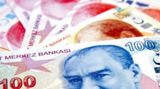 Türk Lirası, 2010'da yüzde 11 değerlendi