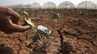 Türkiye'nin küresel ısınma ile mücadele notu 'çok zayıf'