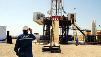 TPAO petrol işletme ruhsatı için başvurdu