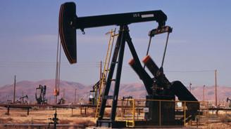 Petrol talebi 2015'te fırlayacak