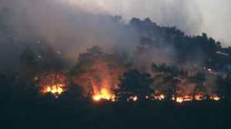 İzmir'deki orman yangını büyüyor