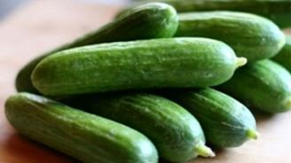Aralık 2014'te en çok salatalık fiyatı arttı