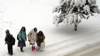 Kar yağışı okulları tatil etti