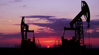 OPEC ülkelerinde cari açık tehlikesi
