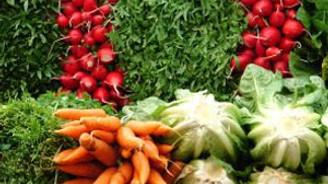 Yaz sebzeleri, 'gider ayak' mutfağın tadını kaçırdı