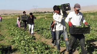 Çiftçilere destek ödemesi yapılacak
