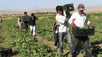 Şekerbank'tan çiftçilere özel Ramazan kampanyası