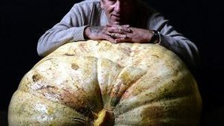 Sebzeler biraz daha büyük olsaydı!