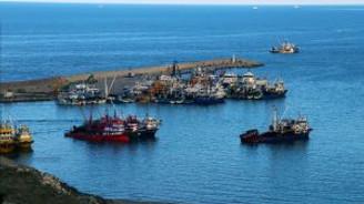 Hamsi bol olunca tekneler limana sığamadı