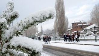 Kar-Kış memleketine döndü