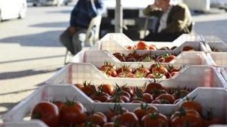 Rusya krizi domatesi vurdu