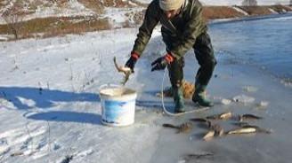 Donmuş nehrin üstünde balık avlıyorlar