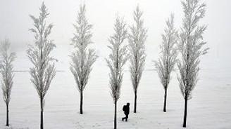 Bitlis'te sis ve dondurucu soğuk