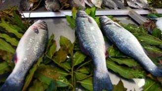 Ramazanda balık tüketimi arttı