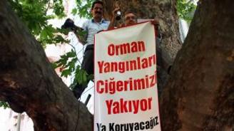 Ağaç tepesinde basın açıklaması