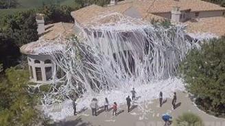 Çılgın tuvalet kağıdı şakası