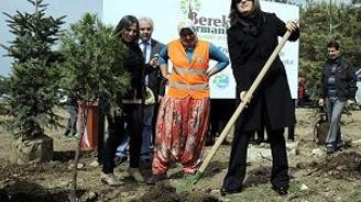 """İstanbul'da """"Bereket Ormanları"""" projesi"""