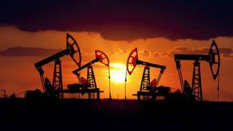 Goldman'dan petrol fiyatı uyarısı