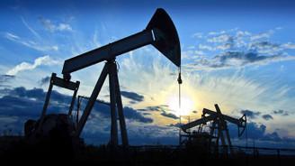 Dolardaki yükseliş petrolü baskıladı