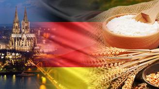 Alman firma Angola için buğday unu satın alacak