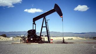 Brent petrol 46 doların altında
