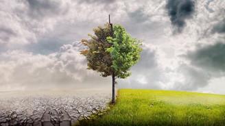 İran 'Paris İklim Anlaşması'nı onayladı