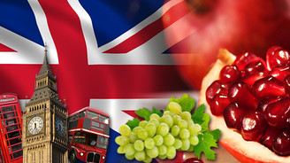 İngilizler taze narımız ve üzümümüze talip