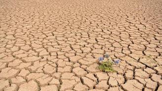 Bolivya'da su krizi büyüyor
