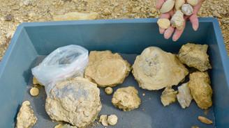 Bozkırda milyon yıllık deniz fosilleri bulundu