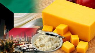 Kuveytli büyük toptancı Türkiye'den peynir ithal edecek