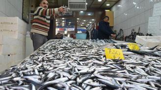 Balıkçılar hamsi konusunda umutsuz