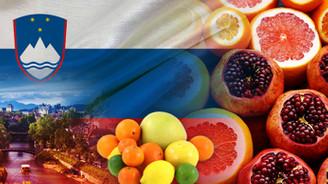 Slovenya düzenli olarak taze meyve ithal edecek