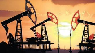 Rus şirketler petrolü düşürmeye yanaşmayabilir